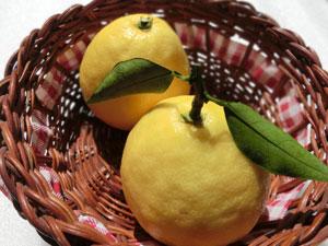 宮崎県の特産品や工芸品