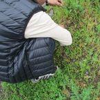鹿児島 草むしり