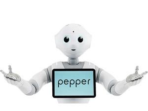 ペッパー(Pepper) 手 スムーズに動く