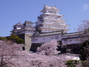 桜の咲く頃の姫路城は格別綺麗だったので買取を強化