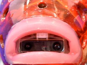 魚型ロボット アイロ AIRO カメラ