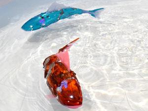 魚型ロボット アイロ AIRO 泳ぎ 正常