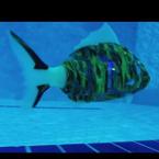 魚型ロボット アイロ AIRO マイロ