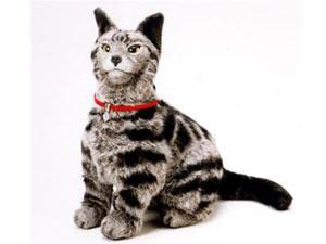 オムロン 猫型ロボット ネコロ necoro 汚れ無し