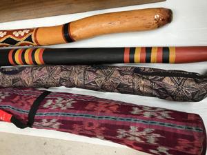 布製のケースと楽器1