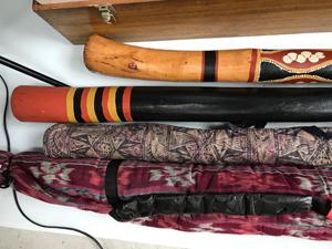 布製のケースと楽器2
