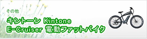 キントーン Kintone E-Cruiser 電動ファットバイク買取