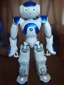 2足歩行 ヒューマノイドロボット ナオ