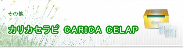 カリカセラピ CARICA CELAP買取