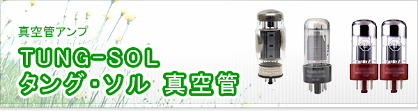 TUNG-SOL タング・ソル 真空管買取