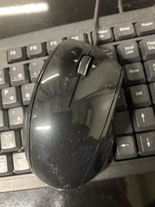 マウス クリーニング