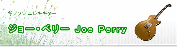 ジョー・ペリー Joe Perry買取