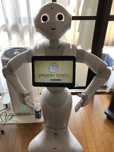 ペッパー Pepperの高価買取のポイント