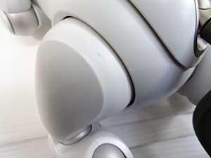 ペットロボット 後ろ足の付け根部分 キズ 汚れ あり